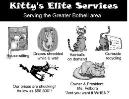Kitty's Elite Services